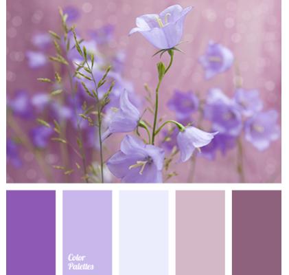 palettes_img